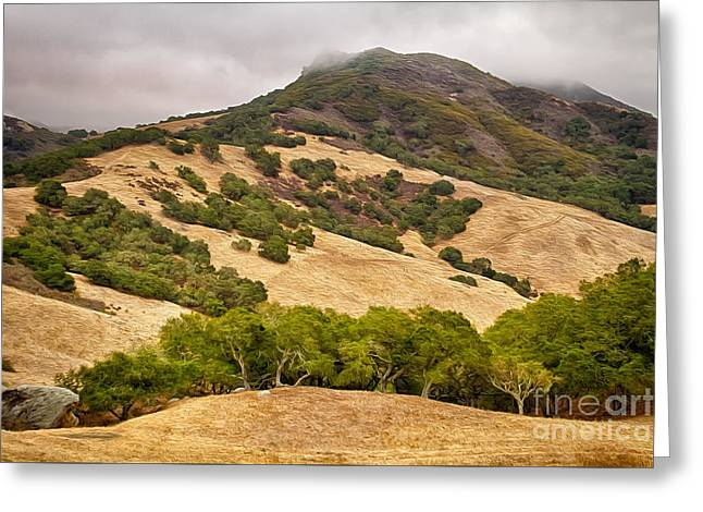 Coast Hills Greeting Card by Alice Cahill