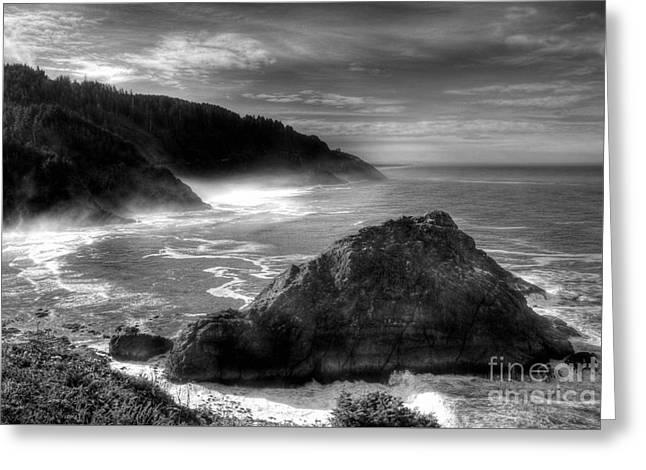 Coast Of Dreams 7 Bw Greeting Card by Mel Steinhauer