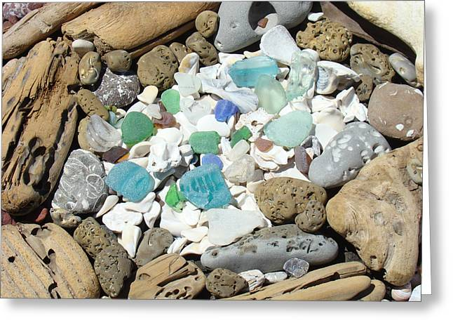 Coast Seaglass Art Prints Shells Fossils Driftwood Greeting Card by Baslee Troutman