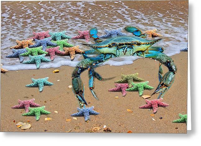 Coastal Crab Collection Greeting Card by Betsy Knapp