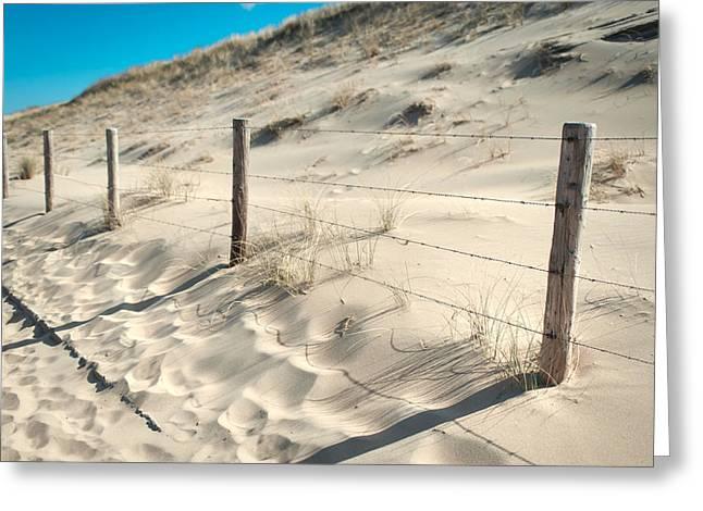 Coastal Dunes In Holland 3 Greeting Card by Jenny Rainbow