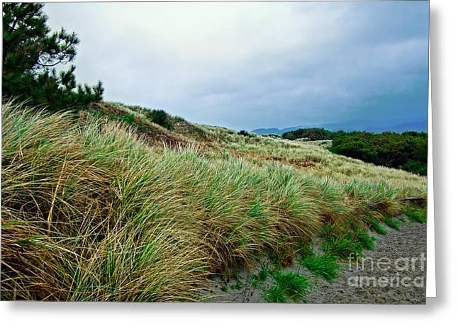 Coastal Flora, Oregon Greeting Card by Tim Holt