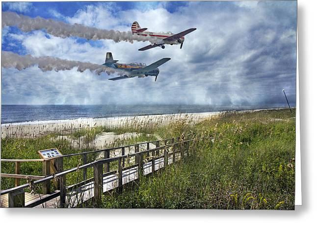 Coastal Flying Greeting Card by Betsy Knapp