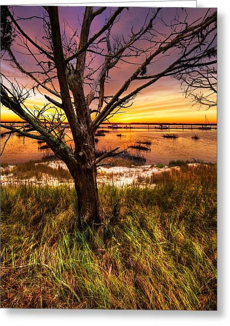 Coastal Harbor Greeting Card by Debra and Dave Vanderlaan