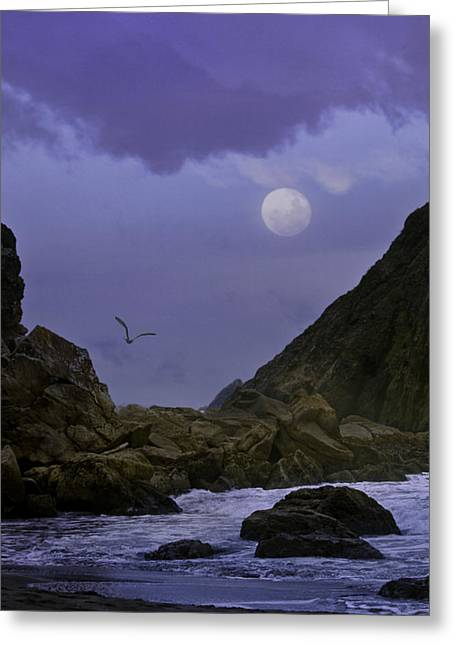 Coastal Moods Moonglo Greeting Card