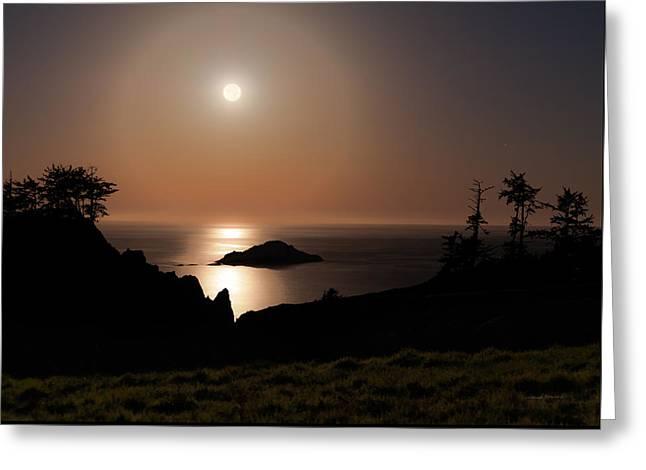 Coastal Moon Dog Greeting Card by Leland D Howard