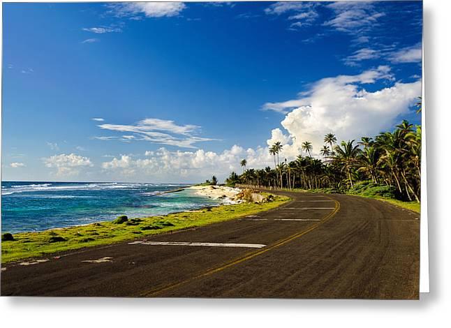 Coastal Road And Palm Trees Greeting Card