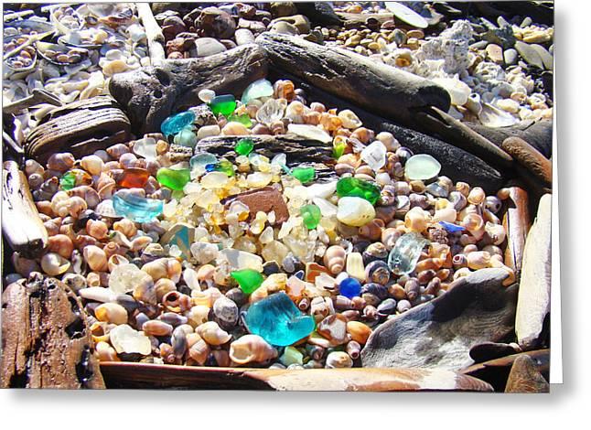 Coastal Seaglass Art Prins Shells Driftwood Greeting Card by Baslee Troutman