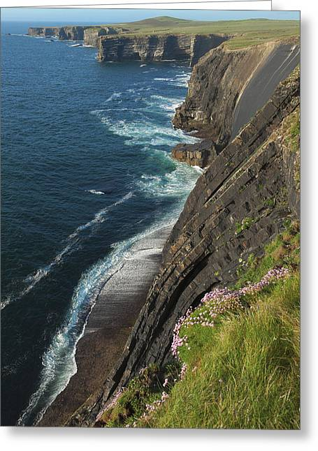 Coastline Along Loop Head_ County Greeting Card by Carl Bruemmer
