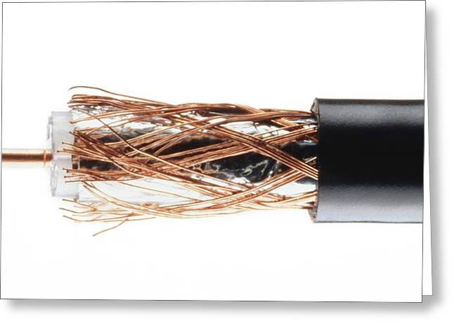Coaxial Cable With Wires Exposed Greeting Card by Dorling Kindersley/uig