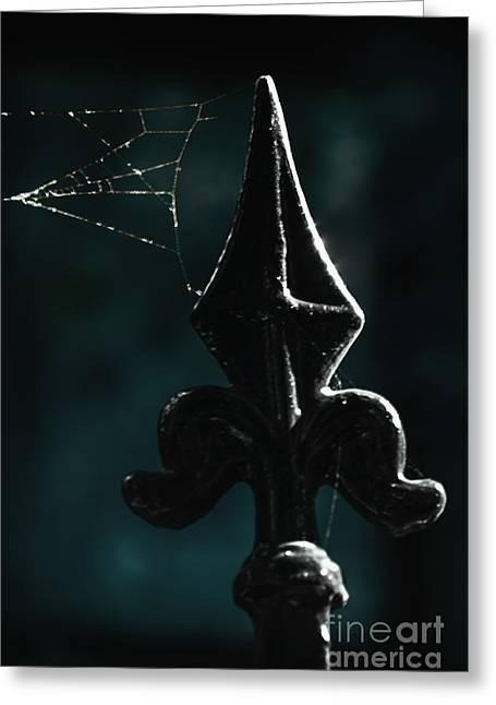 Cobwebs Greeting Card by Margie Hurwich