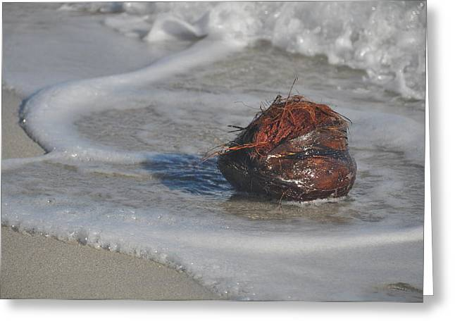 Coconut Bath Greeting Card