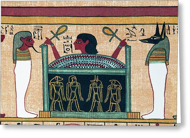 Coffin Of Osiris Greeting Card by Sheila Terry/science Photo Library