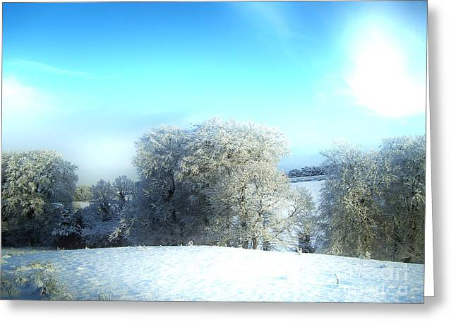 Cold Blue Greeting Card by Nina Ficur Feenan