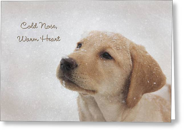 Cold Nose Warm Heart Greeting Card