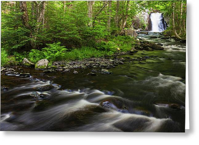 Cold Stream Falls In Maine's Northern Greeting Card by Jerry and Marcy Monkman
