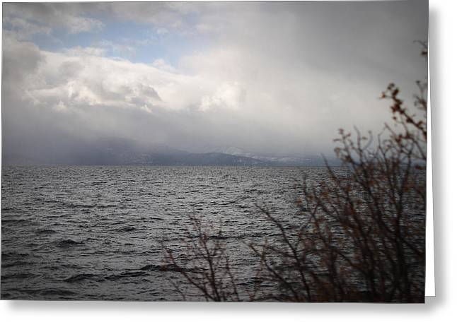 Cold Tahoe Greeting Card