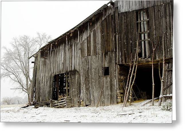 Cold Winter At The Barn  Greeting Card by Wilma  Birdwell