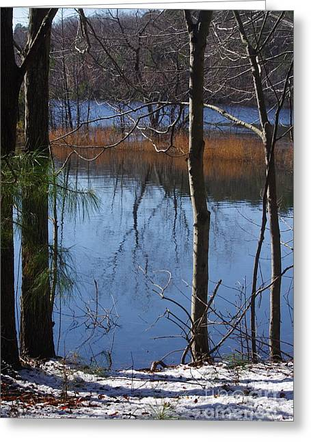 Cold Winter Day Greeting Card by Tannis  Baldwin