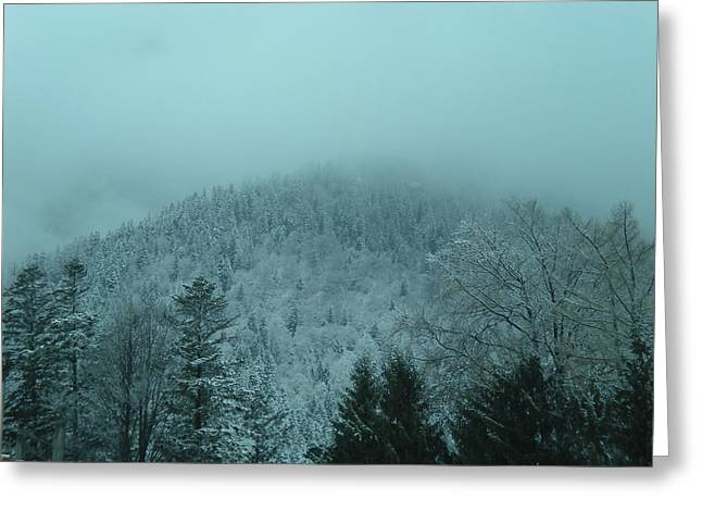 Cold Winter Romania Greeting Card by Andreea Alecu