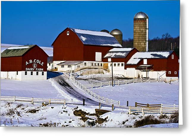 Cole Dairy Farm Greeting Card by David Simons