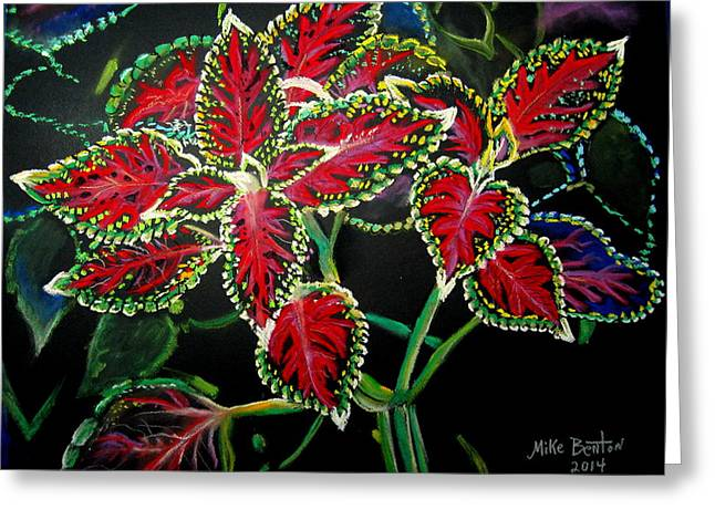 Coleus Greeting Card