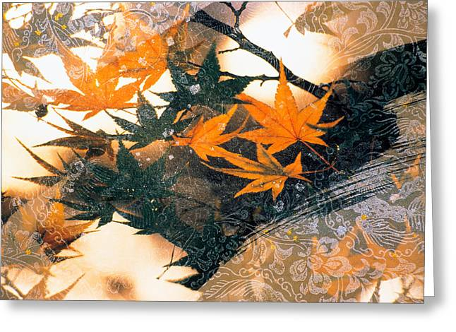 Collage Of Green And Pale Orange Greeting Card