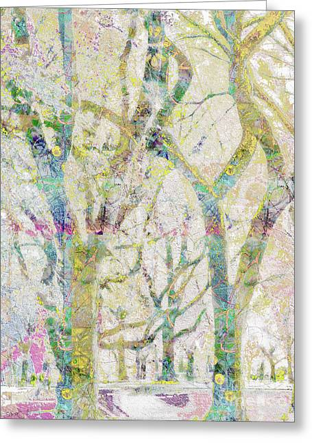 Collage Of Trees Greeting Card