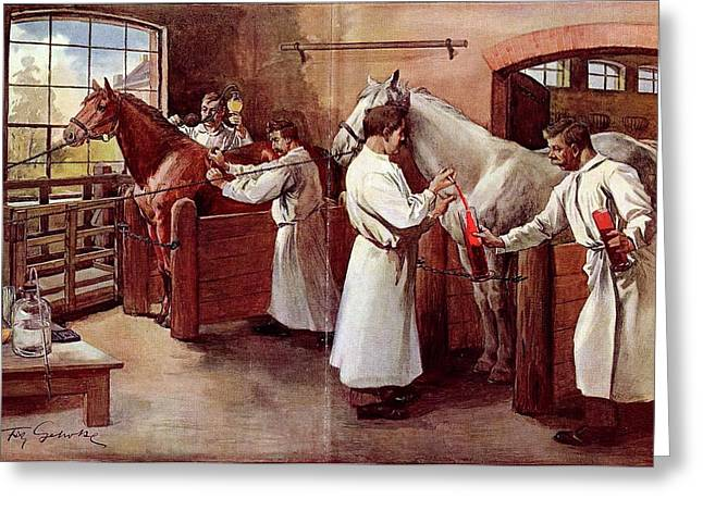 Collecting Horse Blood Greeting Card by National Library Of Medicine