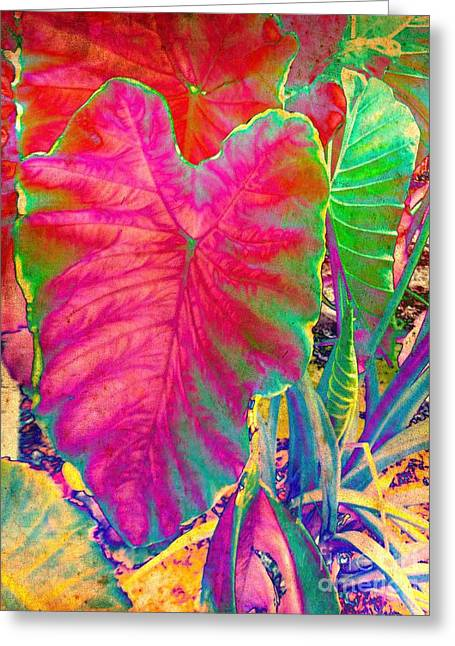 Greeting Card featuring the photograph Colocasia by Denise Tomasura