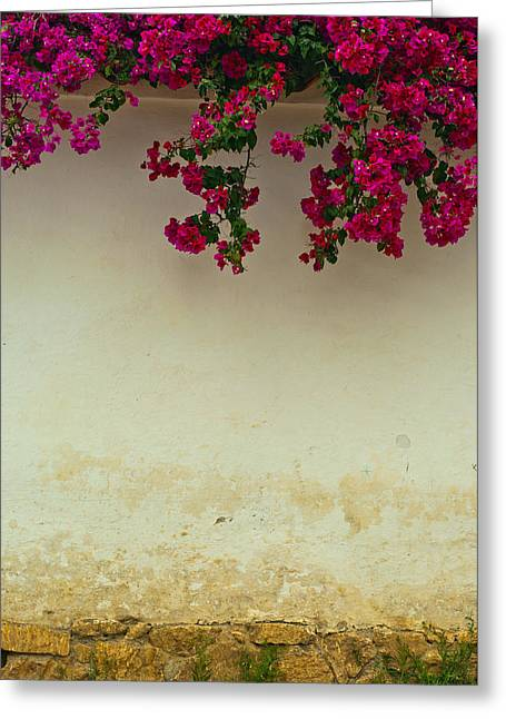 Colonial Wall With Flowers Greeting Card