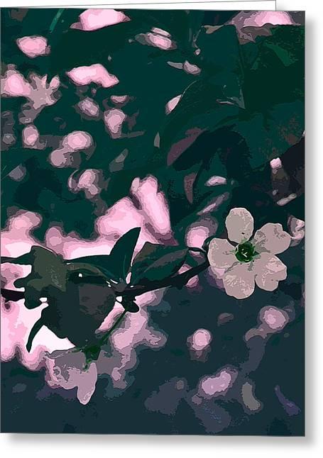 Color 132 Greeting Card by Pamela Cooper