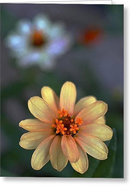 Color 134 Greeting Card by Pamela Cooper