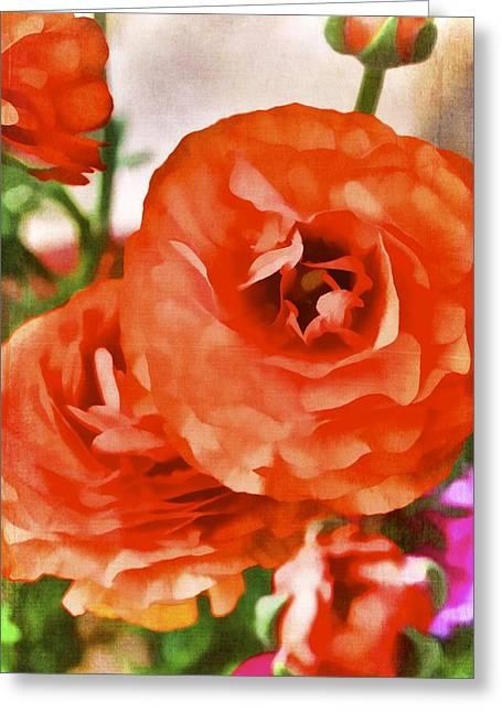 Color 141 Greeting Card by Pamela Cooper