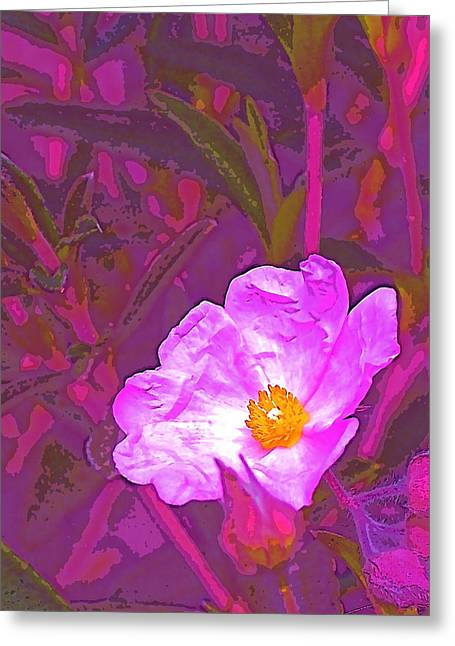 Color 2 Greeting Card by Pamela Cooper