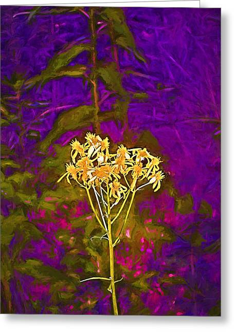 Color 5 Greeting Card by Pamela Cooper