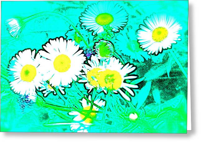 Color 7 Greeting Card by Pamela Cooper