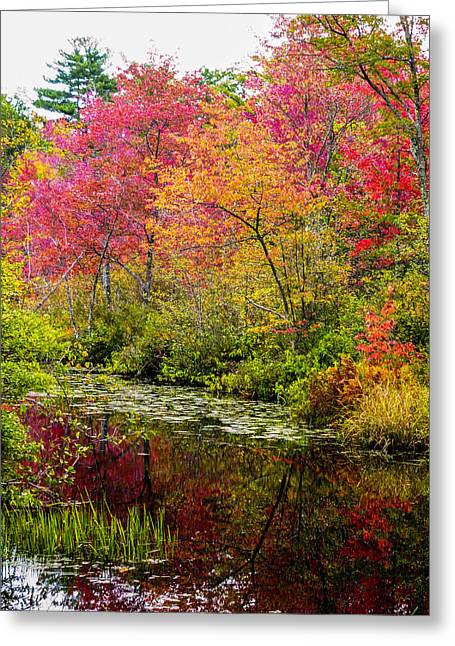 Greeting Card featuring the photograph Color On The Water by Mike Ste Marie