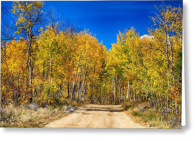 Colorado Autumn Back Country Road Greeting Card