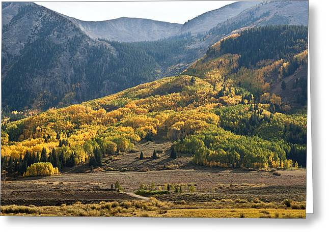 Greeting Card featuring the photograph Colorado Changing Eleven   by Eric Rundle