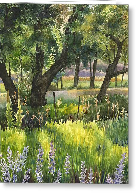Colorado Evening Shadows Greeting Card