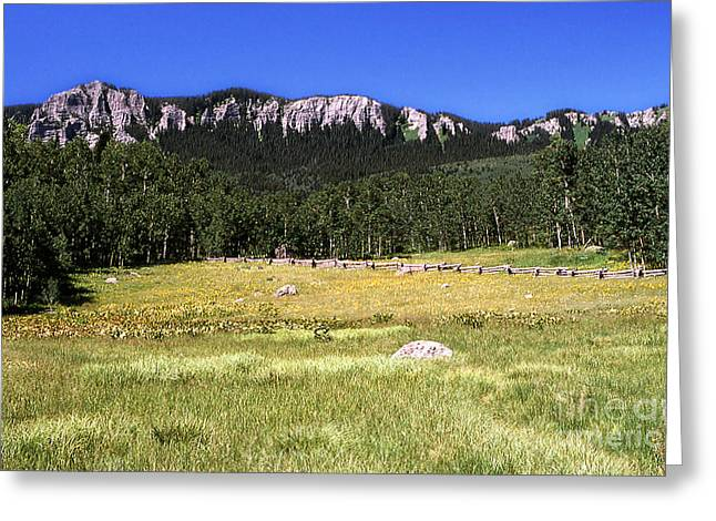 Colorado Field Greeting Card by Alan Russo