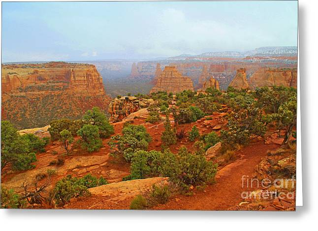 Colorado Natl Monument Snow Coming Down The Canyon Greeting Card by Roena King