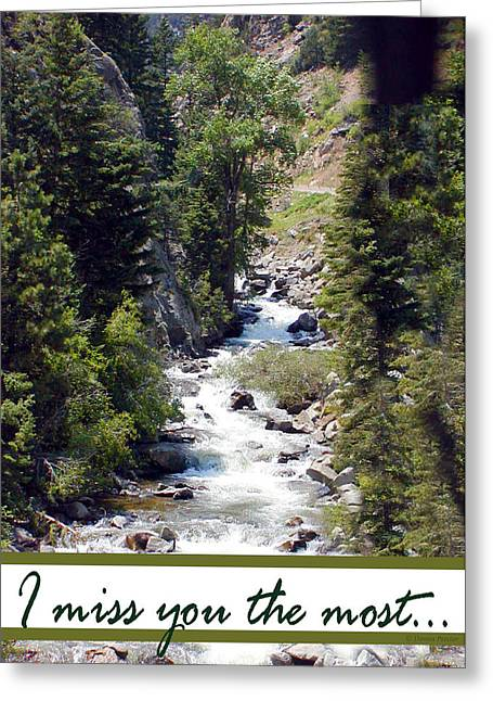 Greeting Card featuring the photograph Colorado On My Mind by Donna Proctor