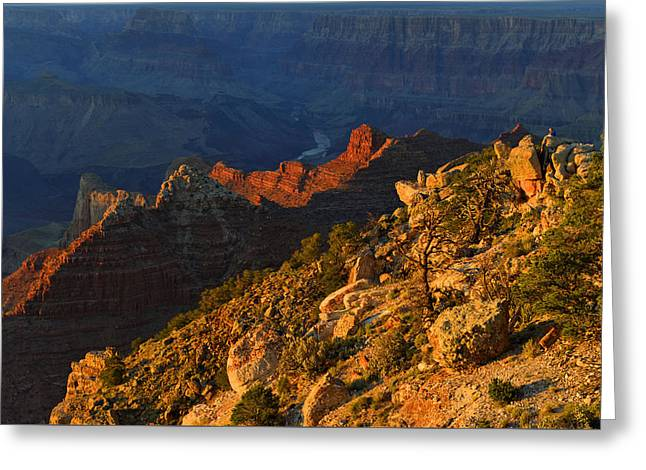 Greeting Card featuring the photograph Colorado River From Navajo Point by Stephen  Vecchiotti