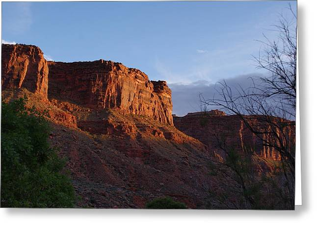 Colorado River Sunrise Greeting Card by Michael J Bauer