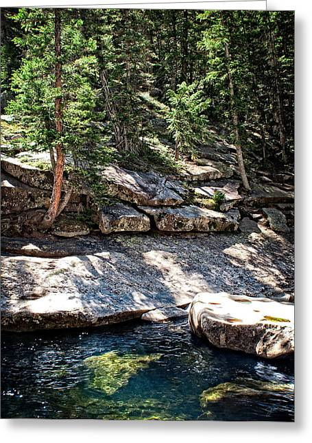 Colorado Rocky Mountain River Woodland Pine Forest Greeting Card by Julie Magers Soulen