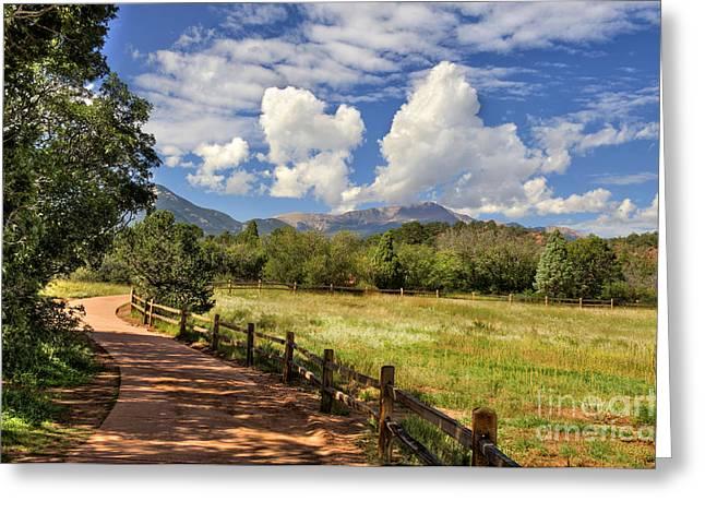 Colorado Scenic Pathway Greeting Card by Cheryl Davis