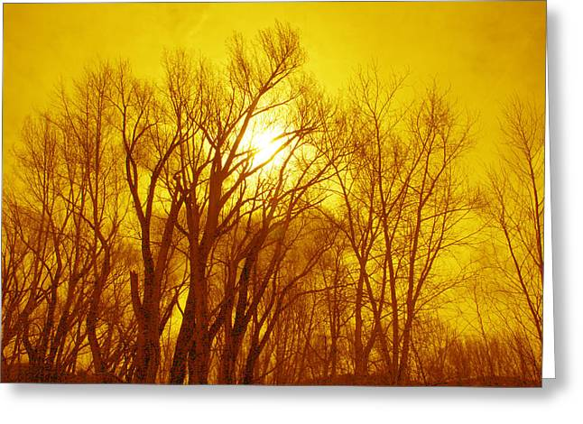 Greeting Card featuring the photograph Colorado Sky by Max Mullins