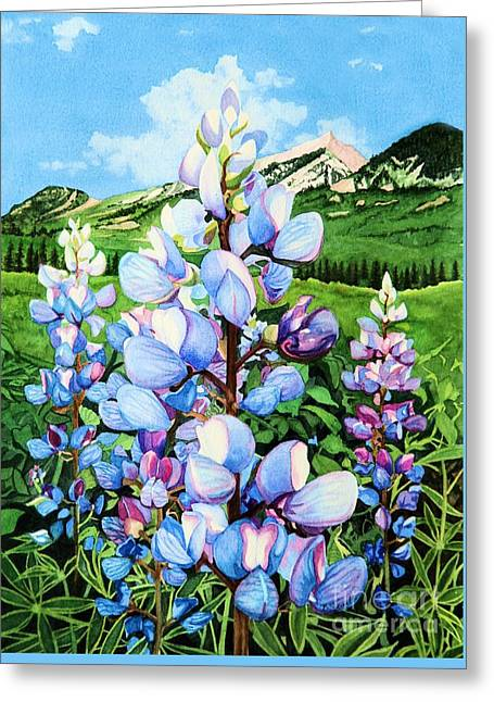 Colorado Summer Blues Greeting Card by Barbara Jewell